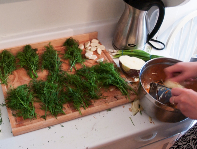Dividing the dill and garlic for the jars